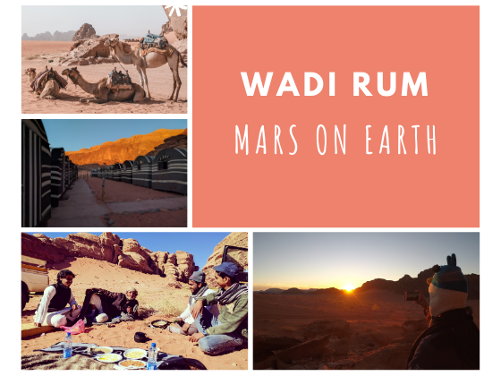 Collage of camels in wadi rum, bedouins in wadi rum, sunset and tents in wadi rum